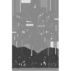 Cliente Lozano
